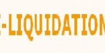 Délai E-liquidation